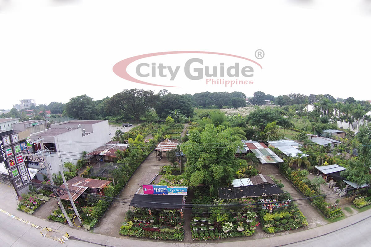 Rosalyns-Garden-Perimeter-Road-Angeles-City